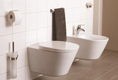 Cum alegem vasul de WC?