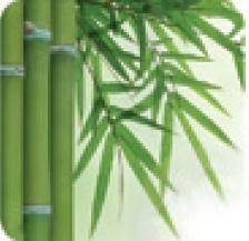 Tehnologie textil Bambus