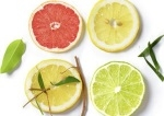 Gama citrica