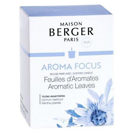 Lumanare parfumata Berger Aroma Focus Aromatic Leaves 180g