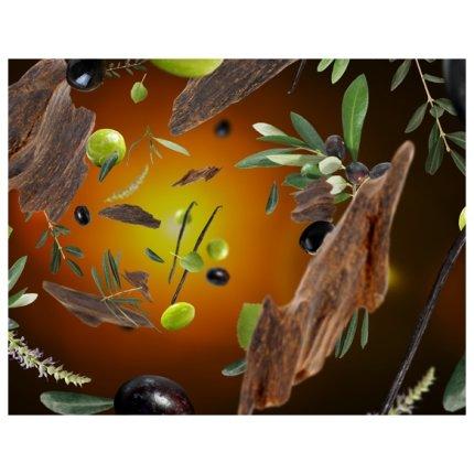 Parfum pentru lampa catalitica Berger Alpha Duopack Under the Olive Tree, Exquisite Sparkle, 2x250ml