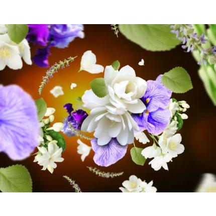Difuzor parfum camera Berger Senso cu parfum Fleurs de Musc 180ml