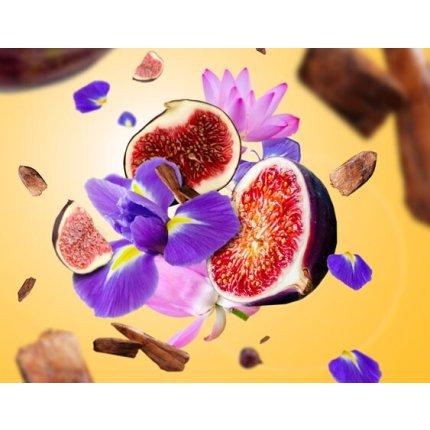 Difuzor ultrasonic parfum Berger Aroma Amphora + parfum Lait de Figue 475ml