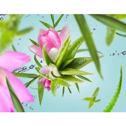 Parfum pentru lampa catalitica Berger Eau d'Aloe 500ml