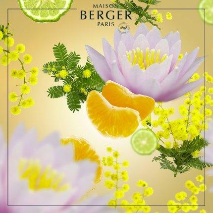 Lumanare parfumata Berger Aroma D-Stress Sweet Fruit 180g