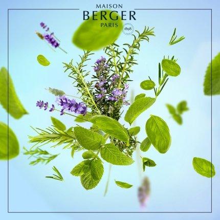 Parfum pentru difuzor Berger Aroma Focus Aromatic Leaves 200ml