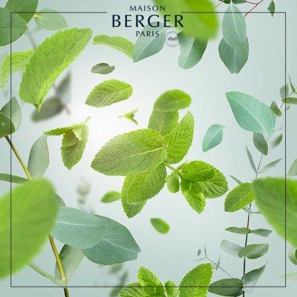 Parfum pentru lampa catalitica Berger Aroma Respire Icy Stroll 500ml