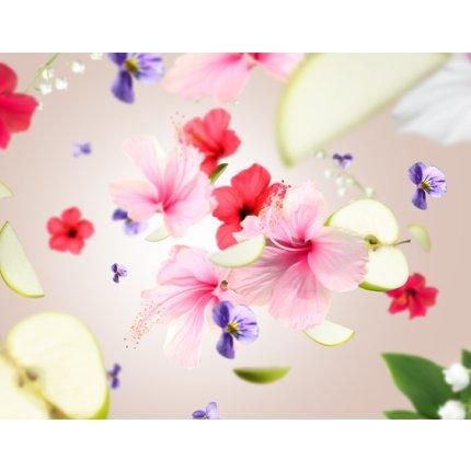 Set Berger lampa catalitica Ice Cube Amber Pink  cu parfum Hibiscus Love