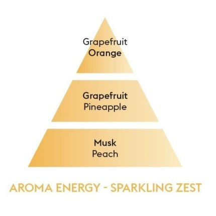 Set cadou Exclusiv Energy Montegrappa