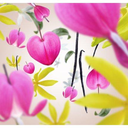 Difuzor parfum camera Berger Aroma Love Fleur Gourmande 200ml