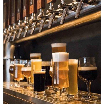 Pahar bere Schott Zwiesel Beer Basic Pils 513ml