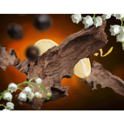 Parfum pentru lampa catalitica Berger Winterwood 500ml