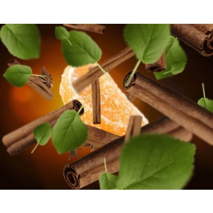 Parfum pentru lampa catalitica Berger Cannelle de Noel 500ml