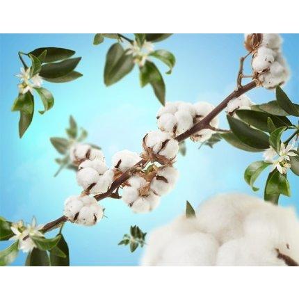 Set lampa catalitica cu parfum Berger Pure Organic cu parfum Caresse de Coton 250ml