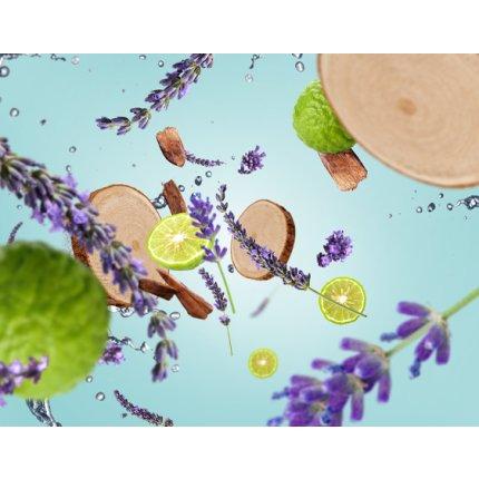 Lumanare parfumata Berger Clarity Grise Fresh Wood 180g