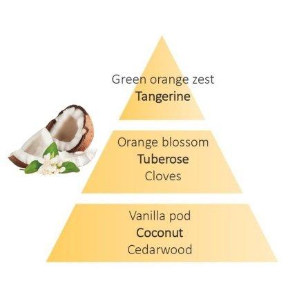 Rezerve ceramice odorizant masina Berger Coconut Monoi 2piese