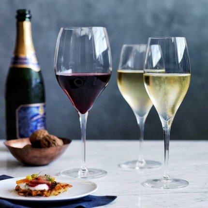 Pahar vin rosu Schott Zwiesel Finesse 437ml