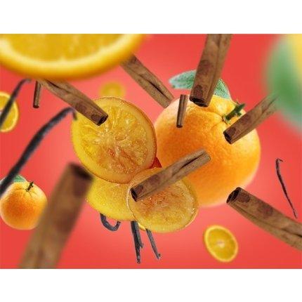 Parfum pentru difuzor ultrasonic Berger Orange de Cannelle 475ml