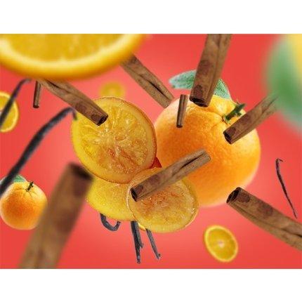 Parfum pentru lampa catalitica Berger Orange de Cannelle 1000ml