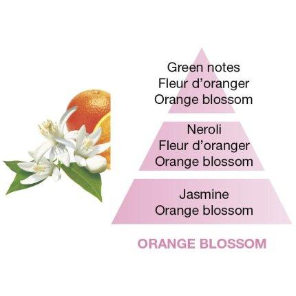 Parfum pentru lampa catalitica Berger Fleur d'Oranger 500ml