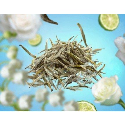 Set Berger lampa catalitica Ice Cube Grey cu parfum Pure White Tea