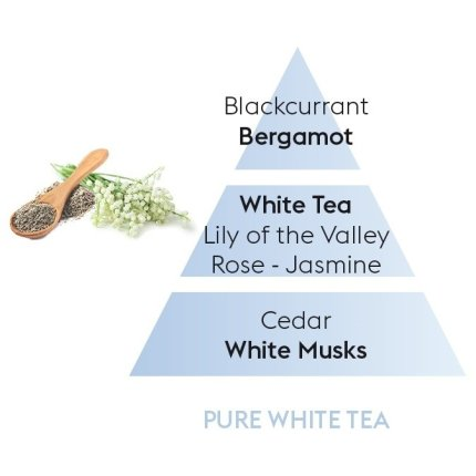 Parfum pentru difuzor ultrasonic Berger Pure White Tea 475ml