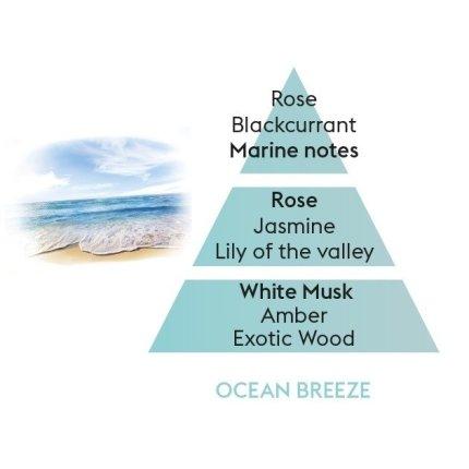 Parfum pentru difuzor Berger Vent d'Ocean 400ml