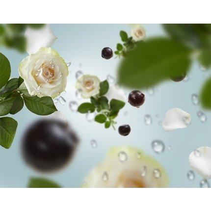 Parfum pentru difuzor Berger Bouquet Parfume Vent d'Ocean 200ml
