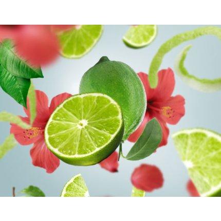 Parfum pentru difuzor Berger Tahitian Green Zest 200ml