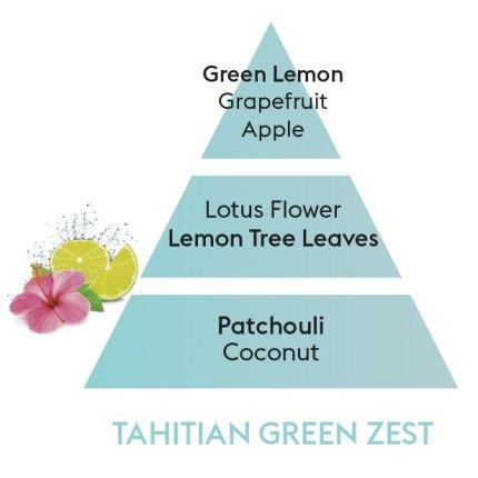 Set Berger lampa catalitica Summer Glacon cu parfum Tahitian Green Zest