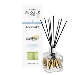 Lumanari & Parfumuri ambient Difuzor parfum camera Berger Bouquet Parfume Cube Savon d'Autrefois 125ml