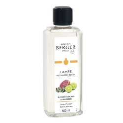 Default Category SensoDays Parfum pentru lampa catalitica Berger Citrus Breeze 500ml