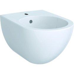 Obiecte sanitare Bideu suspendat Geberit Acanto 51cm, alb