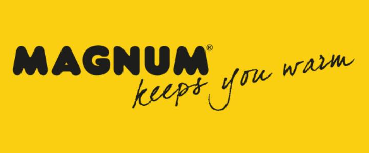 Logo Magnum Heating