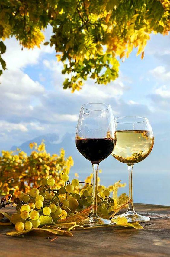 La ce temperatură se bea vinul roșu
